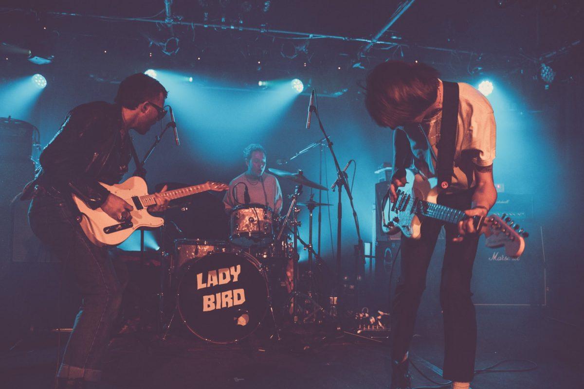 lady-bird-3